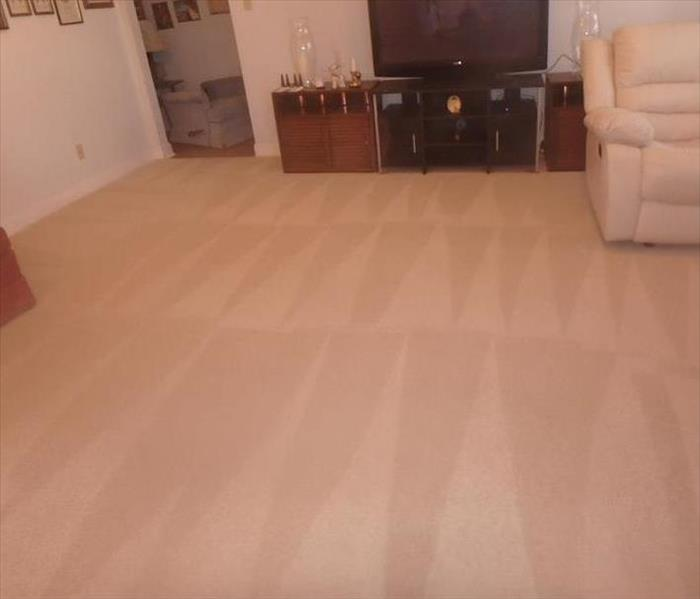 Cleaning Carpet cleaning for the holidays
